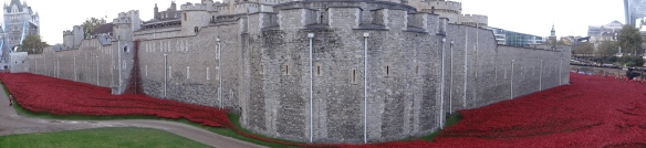 Tower of London and Poppy Installation