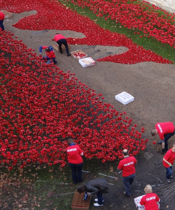 Volunteers at tower assembling poppies