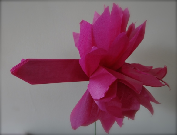The magic of the paper flower